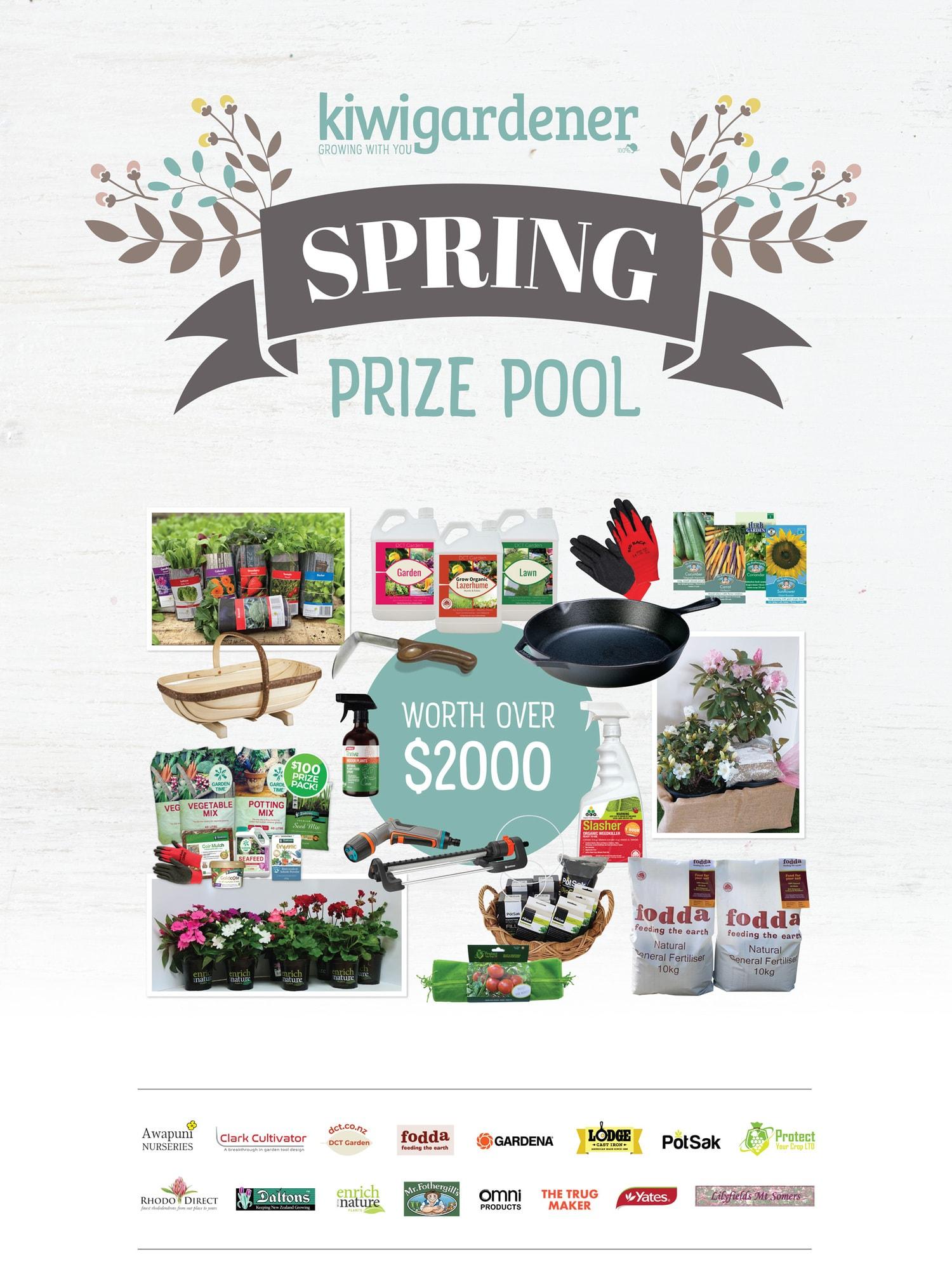 spring promo website page october 2021